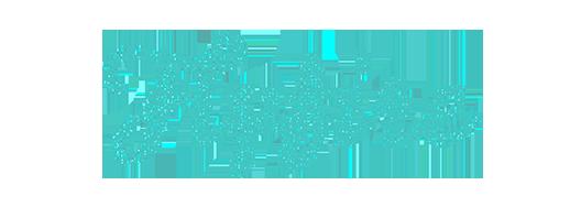 Flyfire logo
