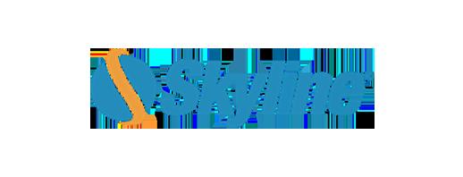 Skyline Software Systems logo